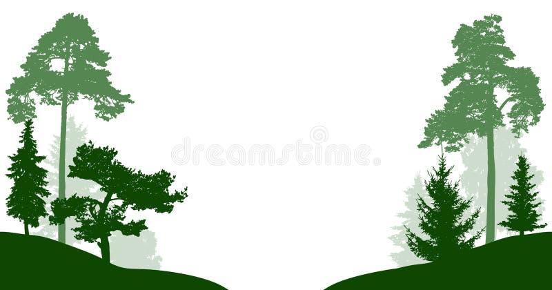 Siluetta messa di vettore degli alberi forestali Legno isolato su fondo bianco Gli alberi nel parco attraversano la strada o il f illustrazione di stock