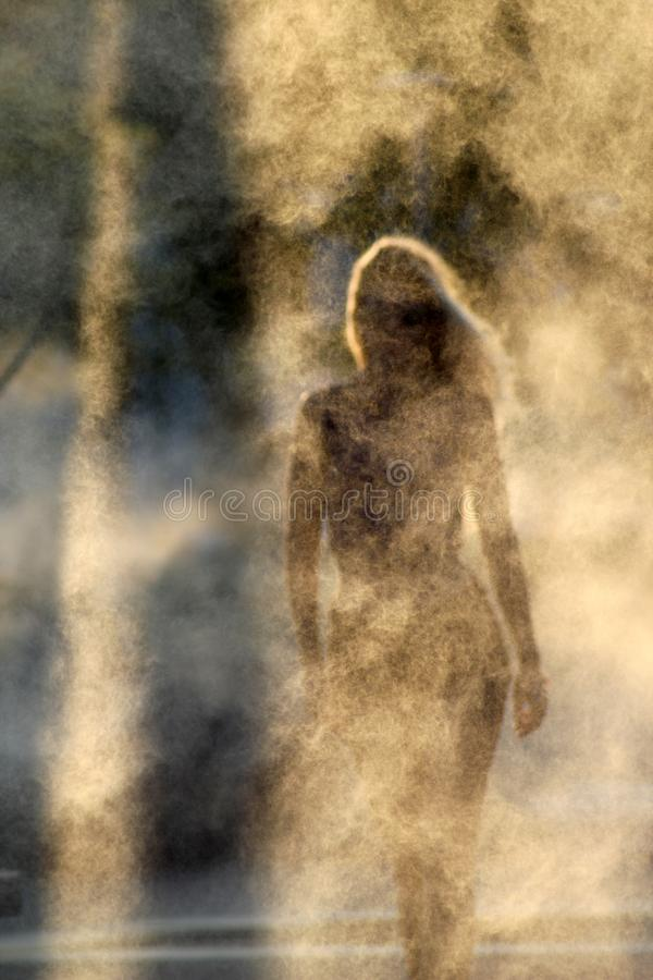 siluetta misteriosa di bella ragazza su un fondo fumoso immagini stock libere da diritti