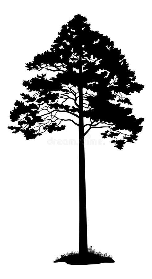 Siluetta nera del pino illustrazione di stock