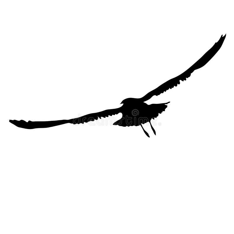 Siluetta nera di un gabbiano di volo illustrazione vettoriale