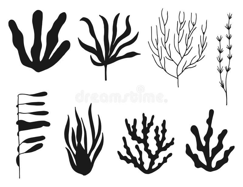Siluetta nera stabilita di vettore dell'alga isolata illustrazione di stock
