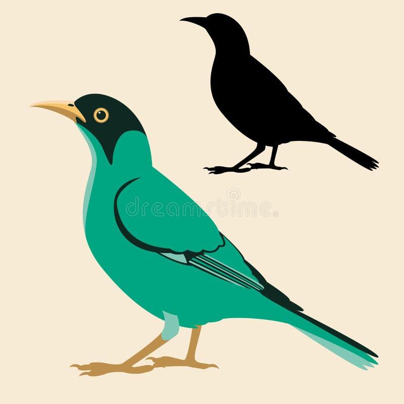 Siluetta piana del nero di stile dell'illustrazione di vettore dell'uccello di Honeycreeper illustrazione vettoriale