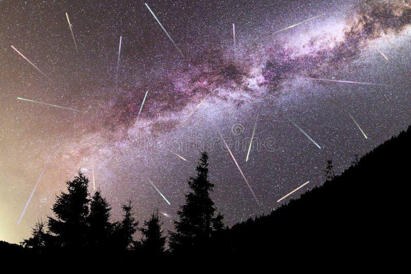 Siluetta porpora dei pini delle stelle cadenti della Via Lattea immagini stock