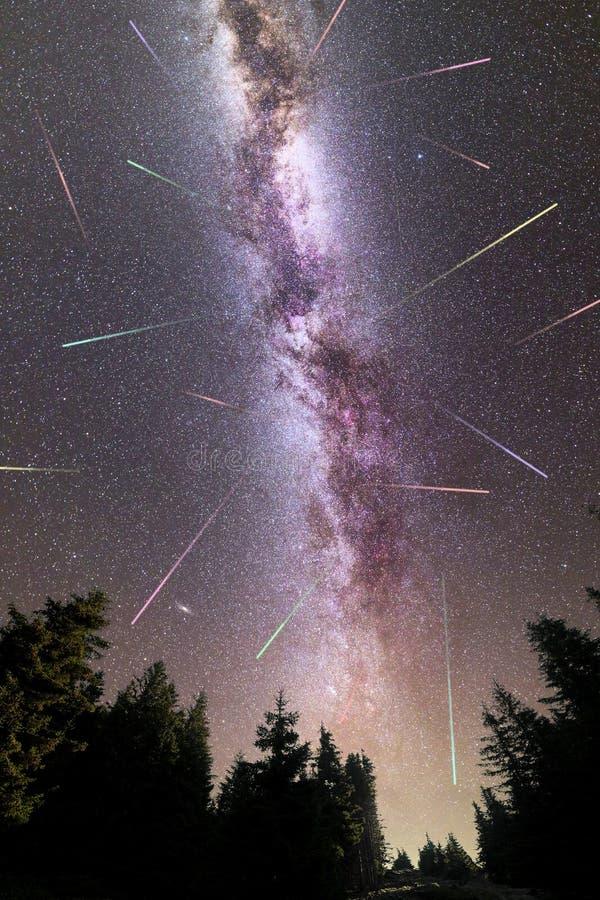 Siluetta porpora dei pini delle stelle cadenti della Via Lattea fotografia stock