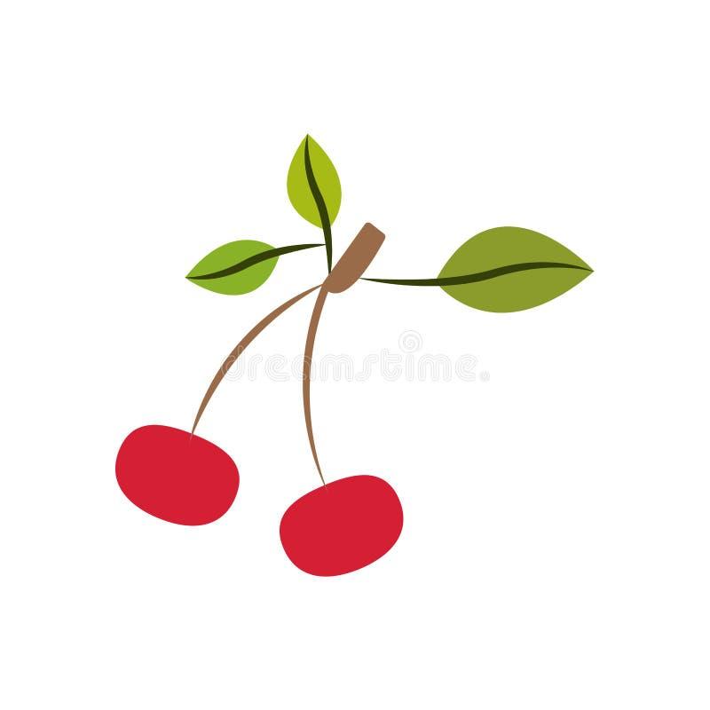 Siluetta variopinta con i frutti delle ciliege con il gambo e le foglie e senza contorno illustrazione vettoriale