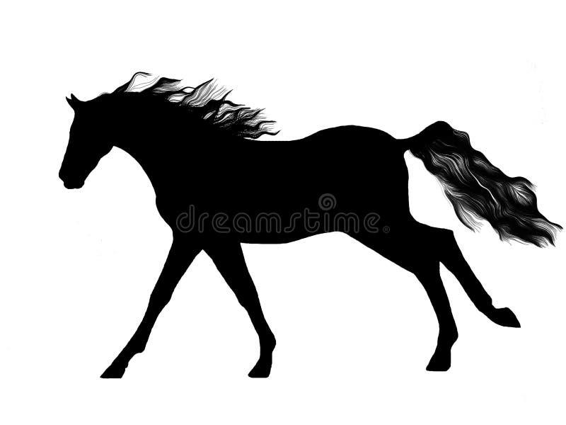 Siluetta + vettore del cavallo illustrazione di stock