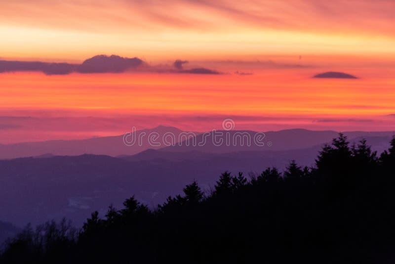Siluette degli alberi contro un cielo al crepuscolo meravigliosamente colorato, con gli strati delle montagne nei precedenti fotografia stock libera da diritti