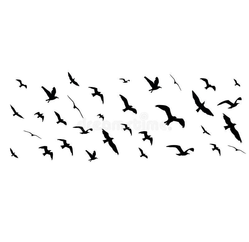 Siluette degli uccelli di volo su fondo bianco illustrazione vettoriale
