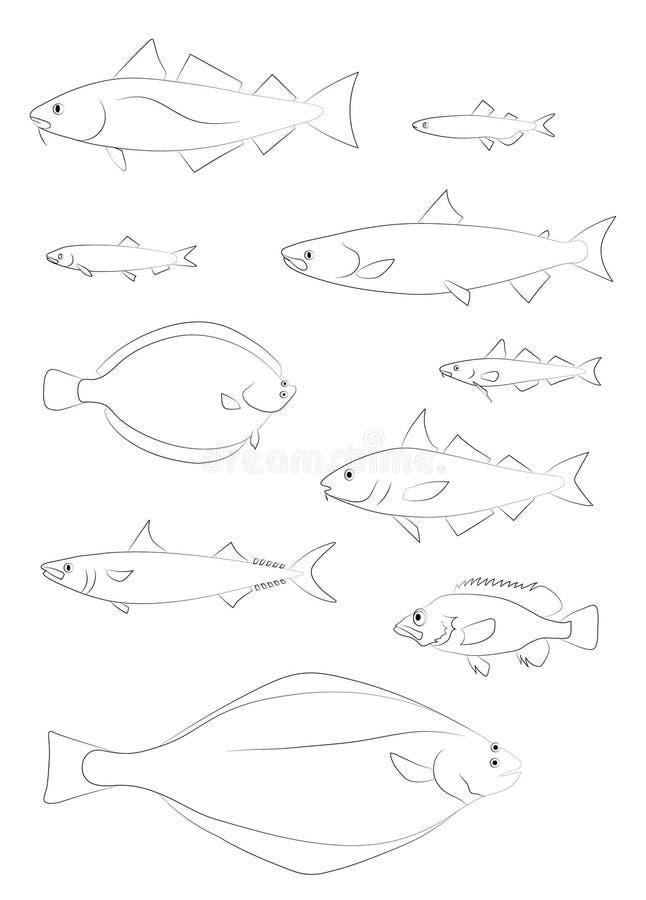 Siluette del pesce di Atlantico Settentrionale Insieme di immagini di vettore royalty illustrazione gratis