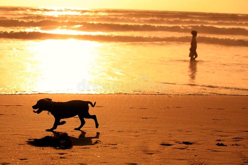 Siluette del seguace servile e di un uomo sulla spiaggia fotografia stock