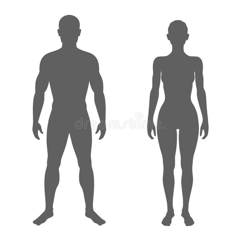 Siluette della donna e dell'uomo illustrazione vettoriale