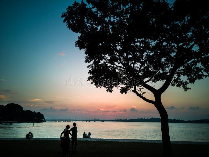 Siluette della gente ad una spiaggia fotografia stock