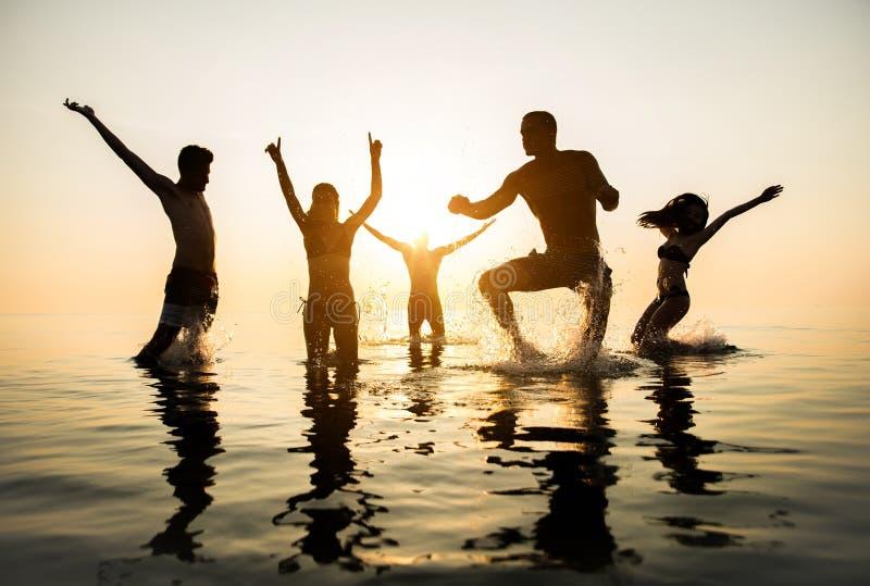 Siluette della gente felice immagini stock libere da diritti