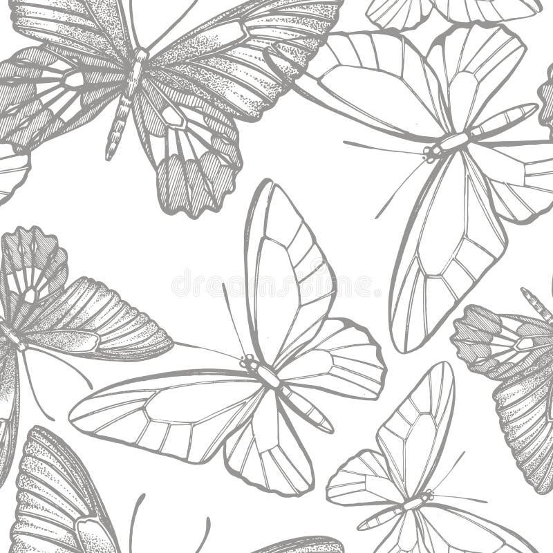 Siluette delle farfalle Icone della farfalla isolate su fondo bianco Illustrazione grafica Reticoli senza giunte immagine stock