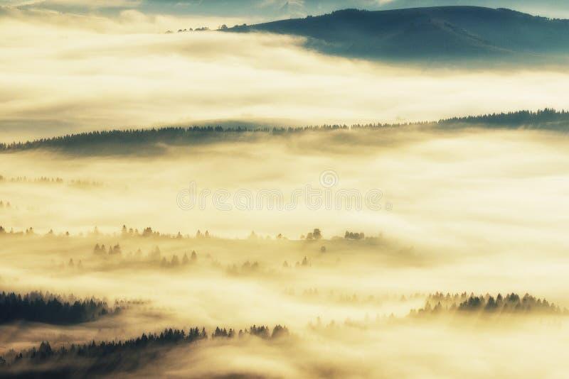 Siluette delle montagne Una mattina nebbiosa di autunno Alba nei Carpathians immagine stock