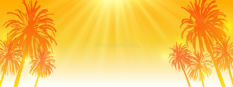 Siluette delle palme sul fondo arancio soleggiato del cielo - insegna panoramica di orizzontale per la vostra progettazione di es illustrazione di stock