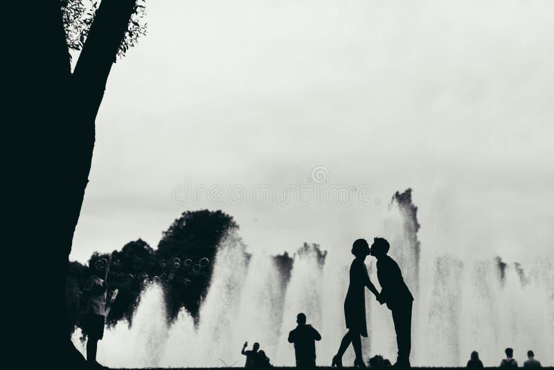 Siluette di baciare la gente fotografia stock