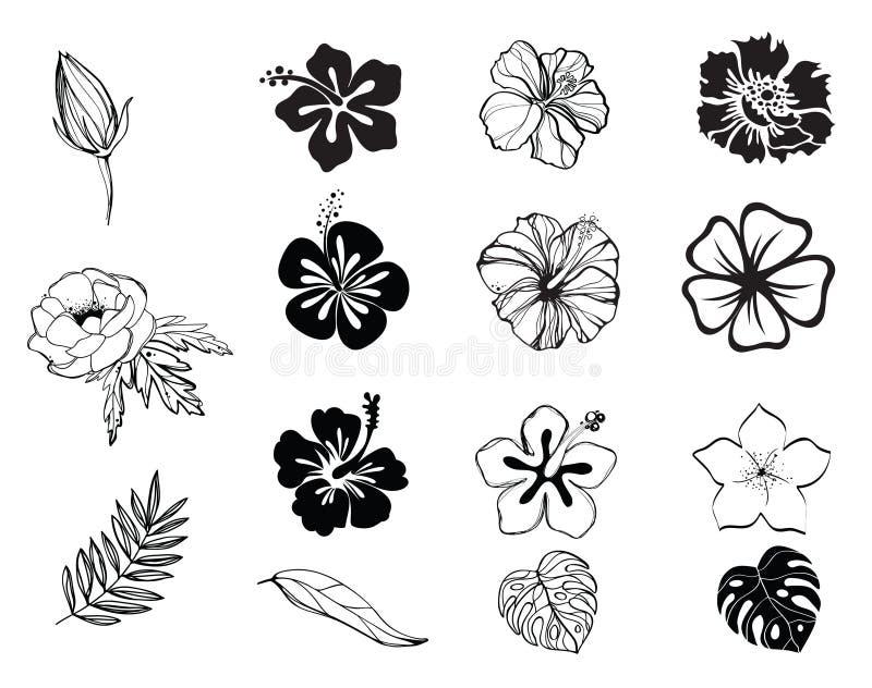 Siluette di in bianco e nero dei fiori isolate royalty illustrazione gratis
