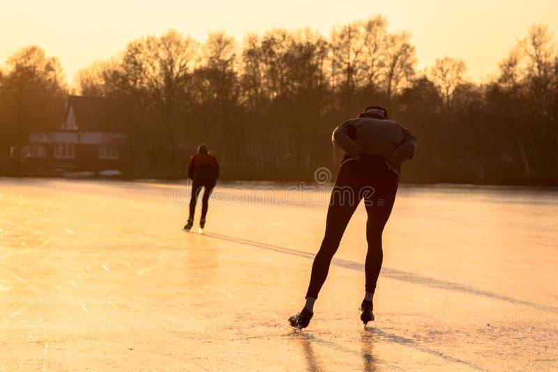 Siluette di pattinaggio di velocità del ghiaccio fotografia stock libera da diritti
