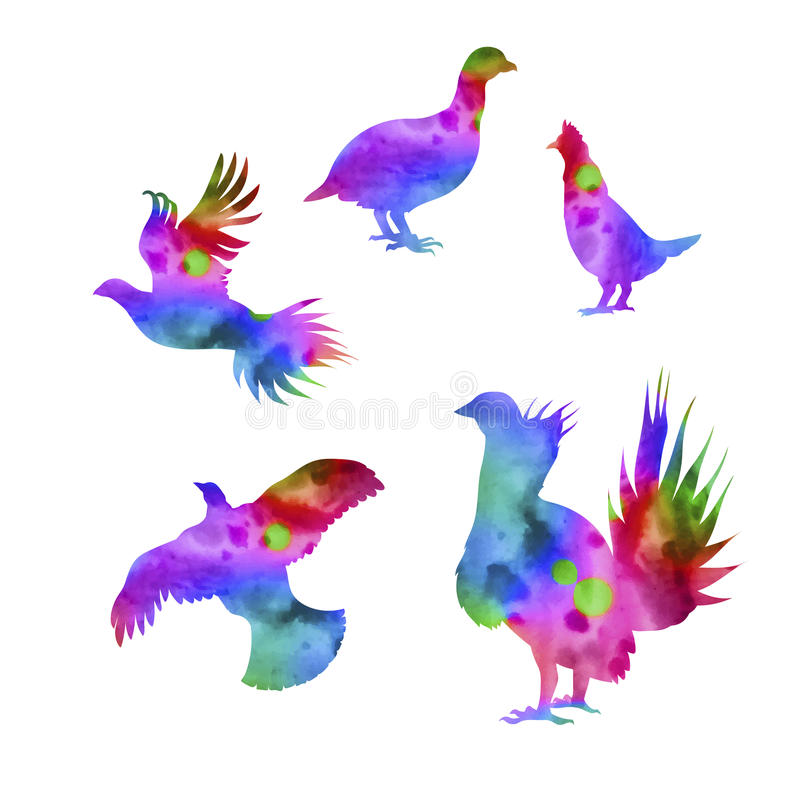 Download Siluette Di Vettore Di Un Urogallo Dell'uccello Illustrazione Vettoriale - Illustrazione di icona, moorhen: 56890136