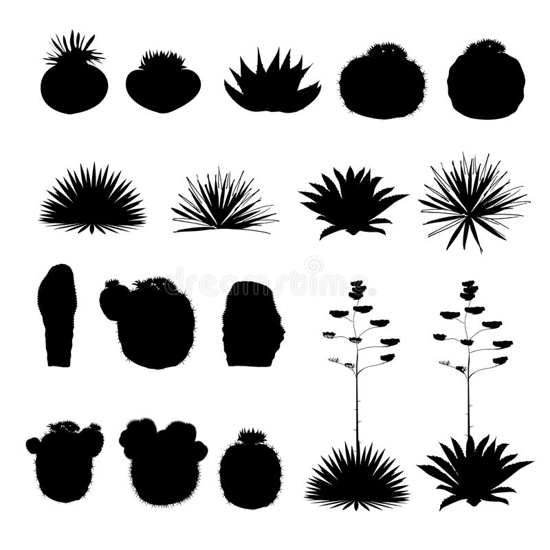 Siluette nere dei cactus rotondi e dell'agave blu Raccolta di vettore illustrazione vettoriale