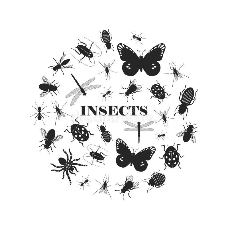 Siluette nere dell'insetto illustrazione vettoriale