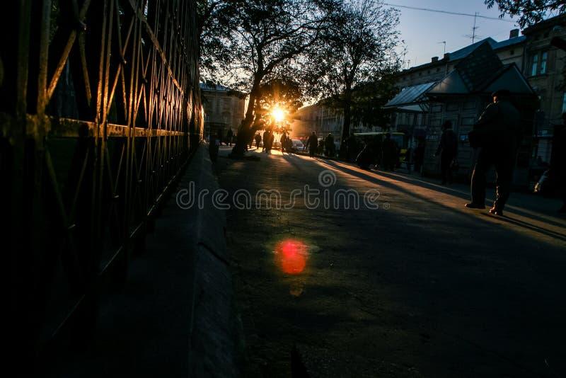 Siluette sulla via scura alla lampadina di Sun al tramonto fotografia stock libera da diritti