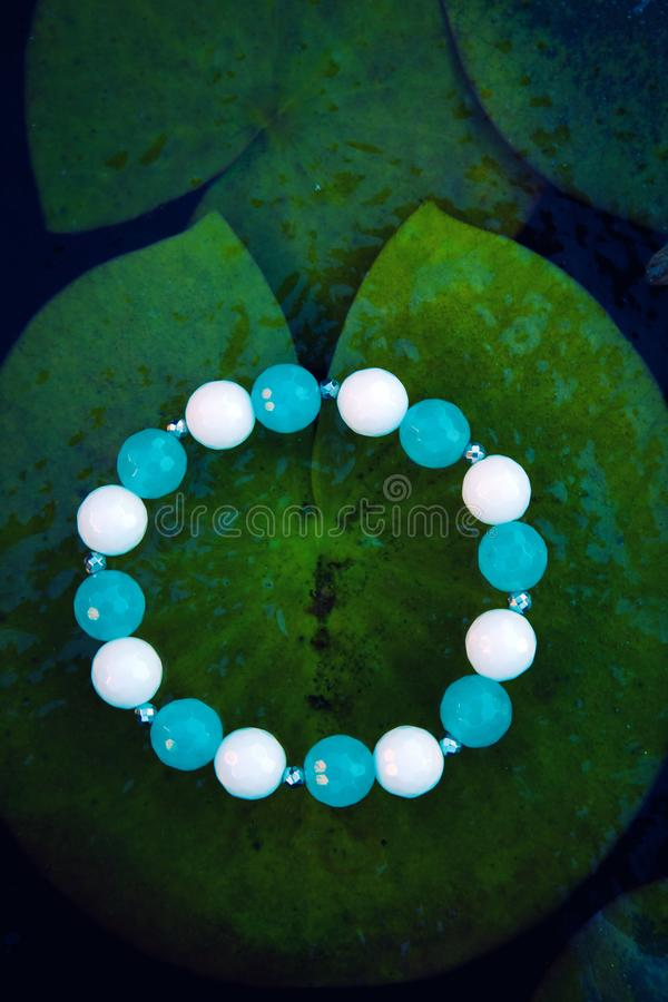 Silver blue white agate stone bracelet river water Lily leafs frozen royalty free stock photography