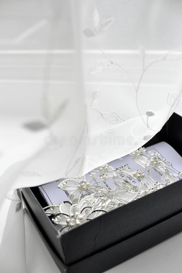 Download Silver brooch and pins stock photo. Image of luxury, black - 26339286