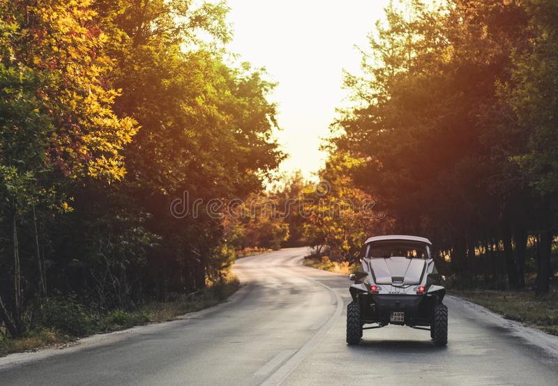 Silver Car in Between Green Leafed Trees royalty free stock photo