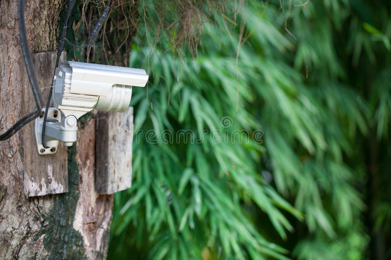 Download Silver CCTV Camera stock image. Image of privacy, power - 42918109