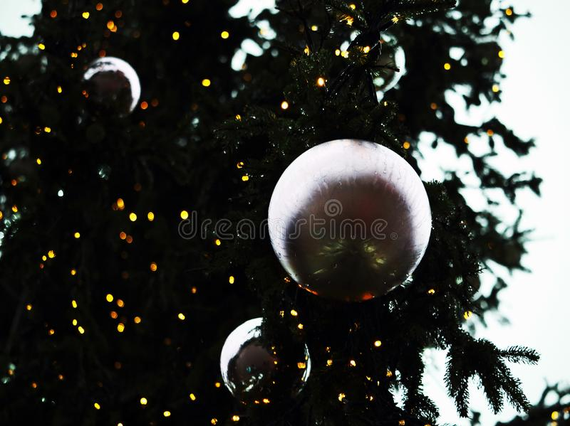 Silver christmas decorative spheres on christmas tree branches on white sky background stock photography