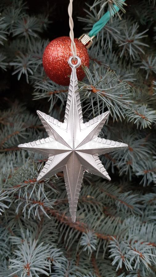 Silver colored star shaped Christmas ornament closeup with blue evergreen fir branches. Christmas tree decorations. stock photo