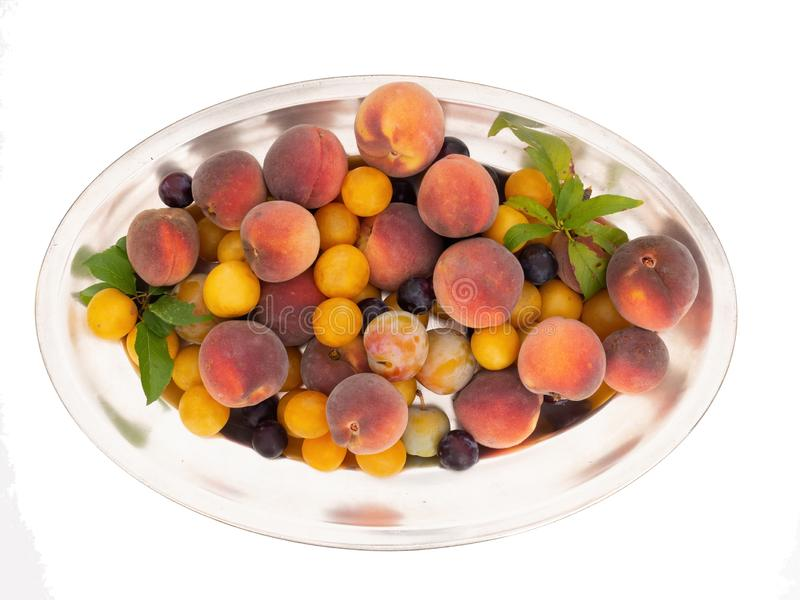 Silver colour oval plate with old fashioned fruit from a long abandoned orchard. Tiny red and yellow plums, sweet. Peaches etc. Natural fruit. Isolated on white stock image