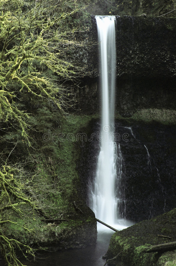 Silver Creek Falls royalty free stock photography