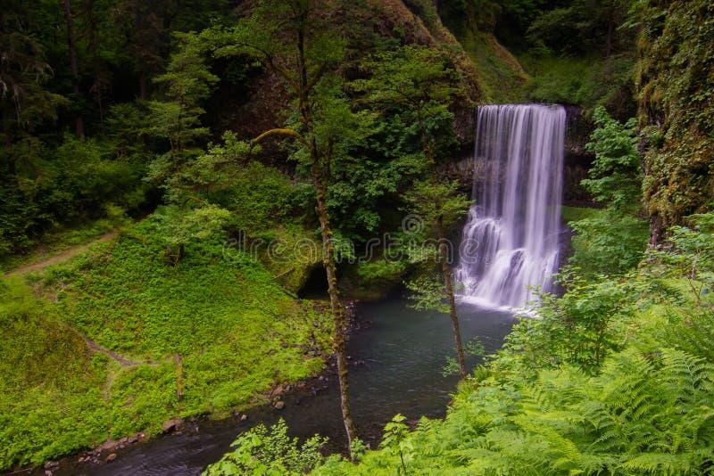 Silver creek falls royalty free stock photos