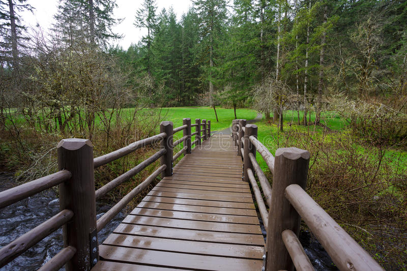 Silver Falls State Park. Bridge over a creek on the South Falls Loop Trail, part of the Trail of Ten Falls at Silver Falls State Park in Oregon royalty free stock photo