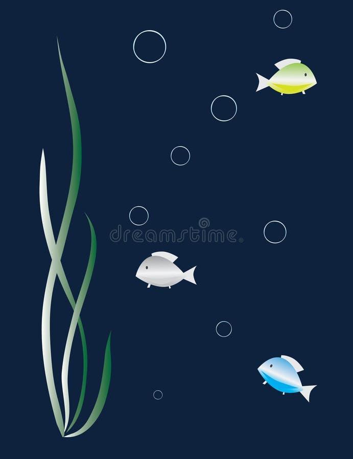 Download Silver Fish Among The Seaweed Stock Vector - Image: 7905160