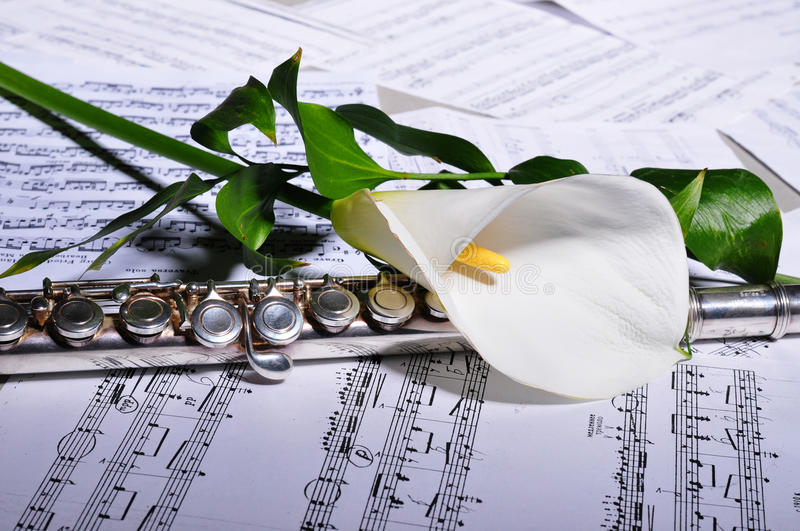 Silver flute and sheet music, flower royalty free stock photo