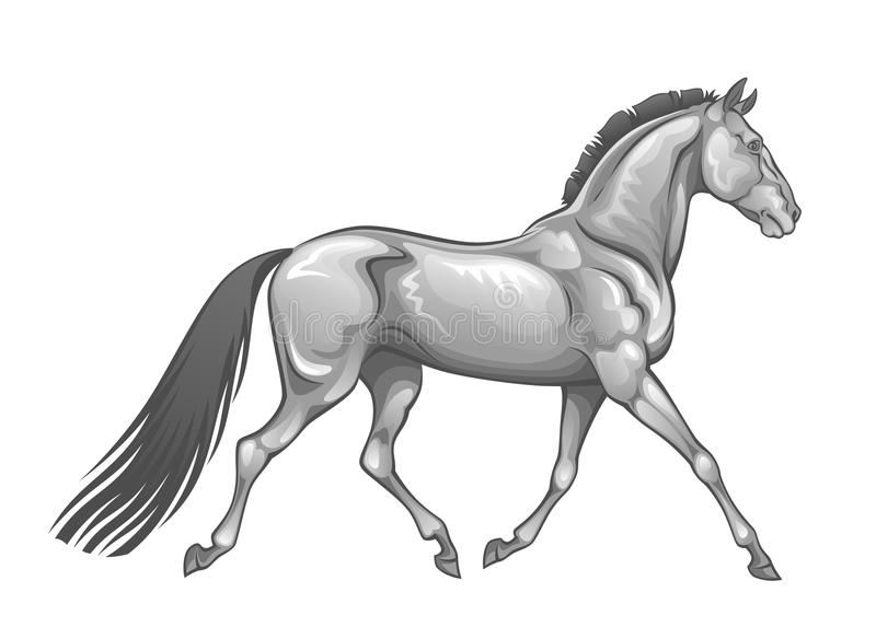 Silver horse royalty free illustration