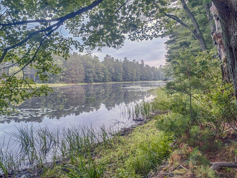 Download Silver Lake En Sullivan County Image stock - Image du été, argent: 76075849