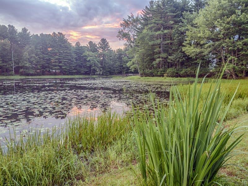 Download Silver Lake En Sullivan County Image stock - Image du rural, sunset: 76075859