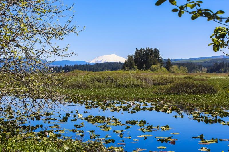 Silver Lake et Mt.St.Helens sur l'horizon photographie stock
