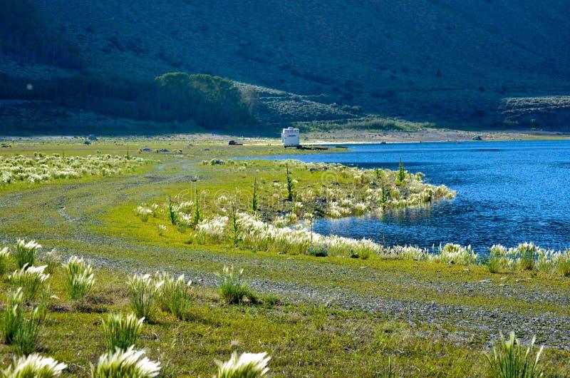 Silver Lake nehmen im Juni See Kalifornien Zuflucht lizenzfreie stockfotos