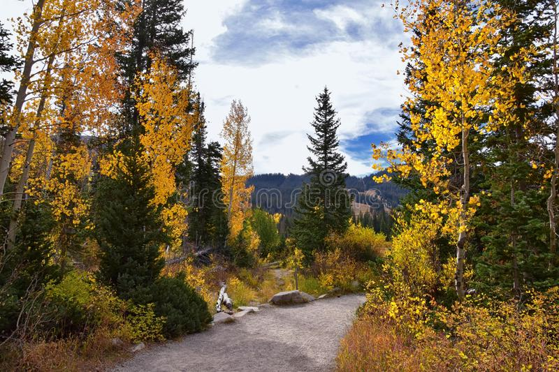 Silver Lake by Solitude and Brighton Ski resort in Big Cottonwood Canyon. Panoramic Views from the hiking and boardwalk trails of. The surrounding mountains stock photos