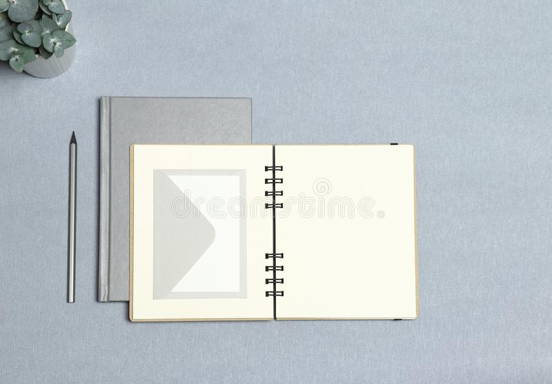 Silver notebook, opened notebook, white envelope, silver pencil, green plant on the grey background royalty free stock images