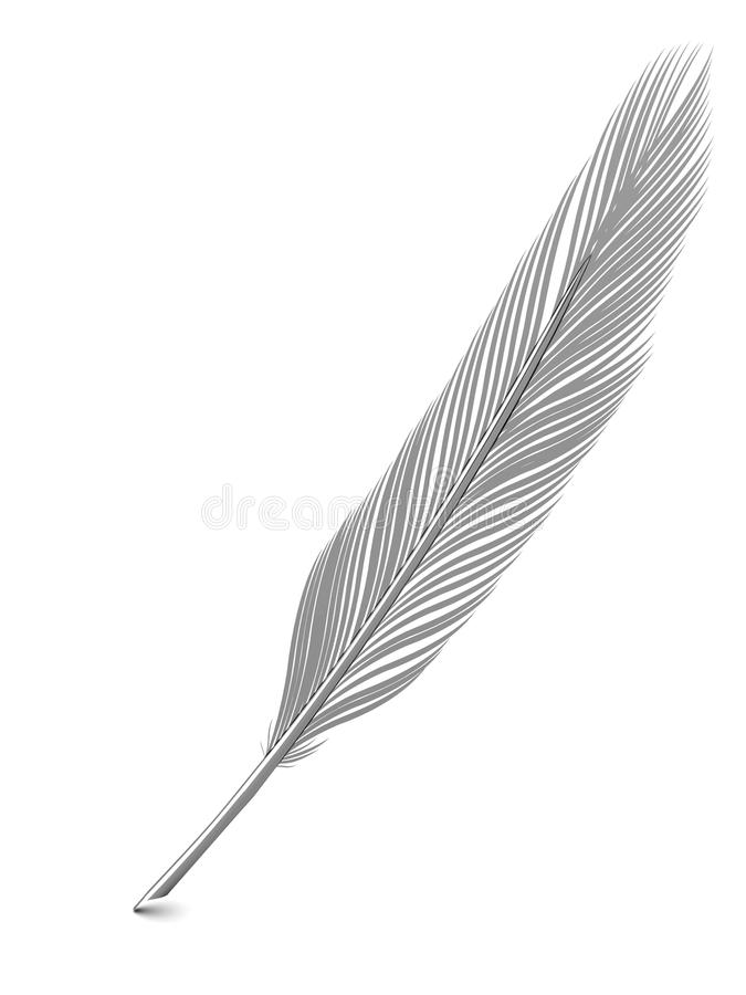 Download Silver Or Platinum Feather Quill Over White Stock Photo - Image: 13842508