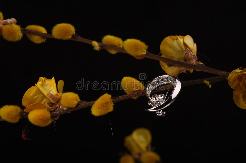 Silver ring and yellow flowers stock image
