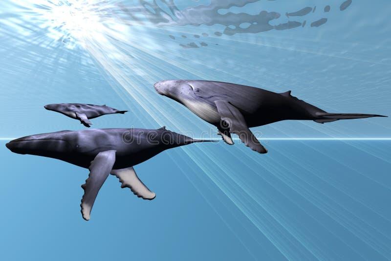 Silver Sea royalty free illustration