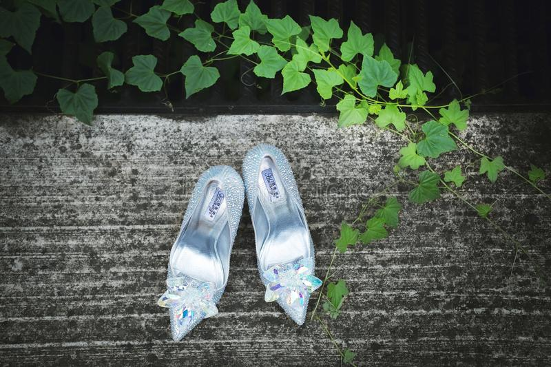 Silver shoes in garden royalty free stock image